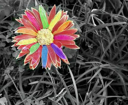 Photoshop Thread Flower