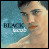 Updating the HE Avatar Gallery Jacob-rain-icon