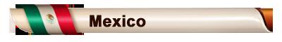 ANFPES - Chilenizamos Tu PES - Portal BarraMundialista_Mexico