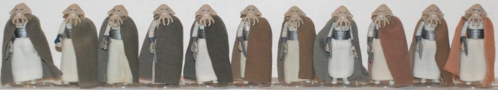 Orange Cape Squid Head: Variation, Discolouration, or Fake? DSC_0499