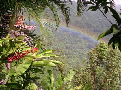 cầu vồng Rainbow1