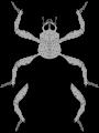 Aburame Clan 90px-Aburame_Symbolsvg