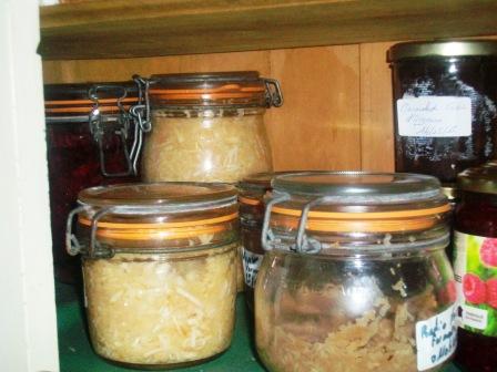Conservation par fermentation 100_9487_zpsmkyss6ry