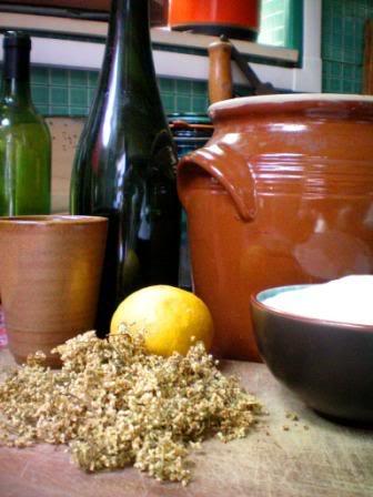 [Recette] Limonade de fleurs de Sureau SureauNoir06