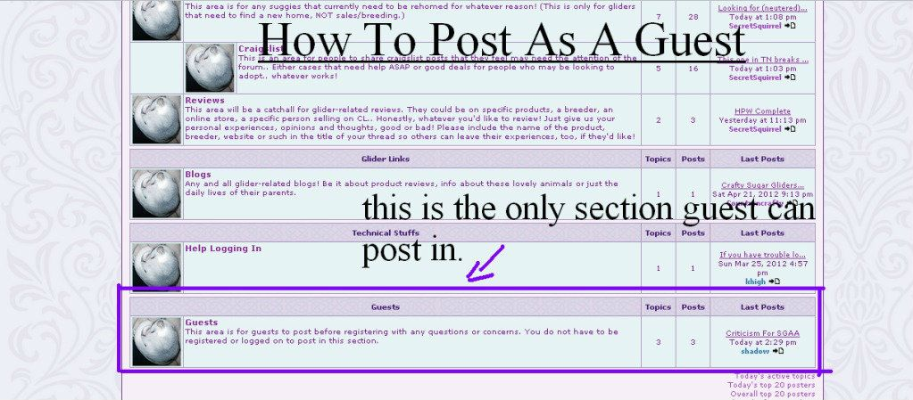 How To Post As A Guest  Howtopostasaguest3