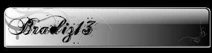 Bradiz13's Work [UPDATED] Bradiz13