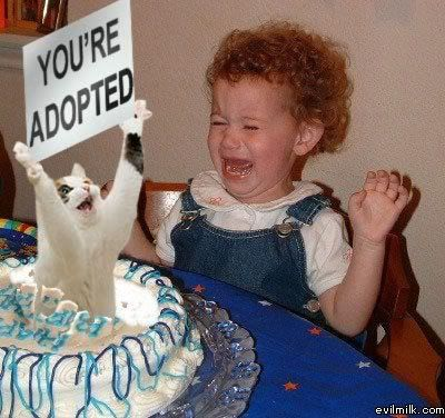Happy Birthday Blizzard Blade Forums! Your_Adopted
