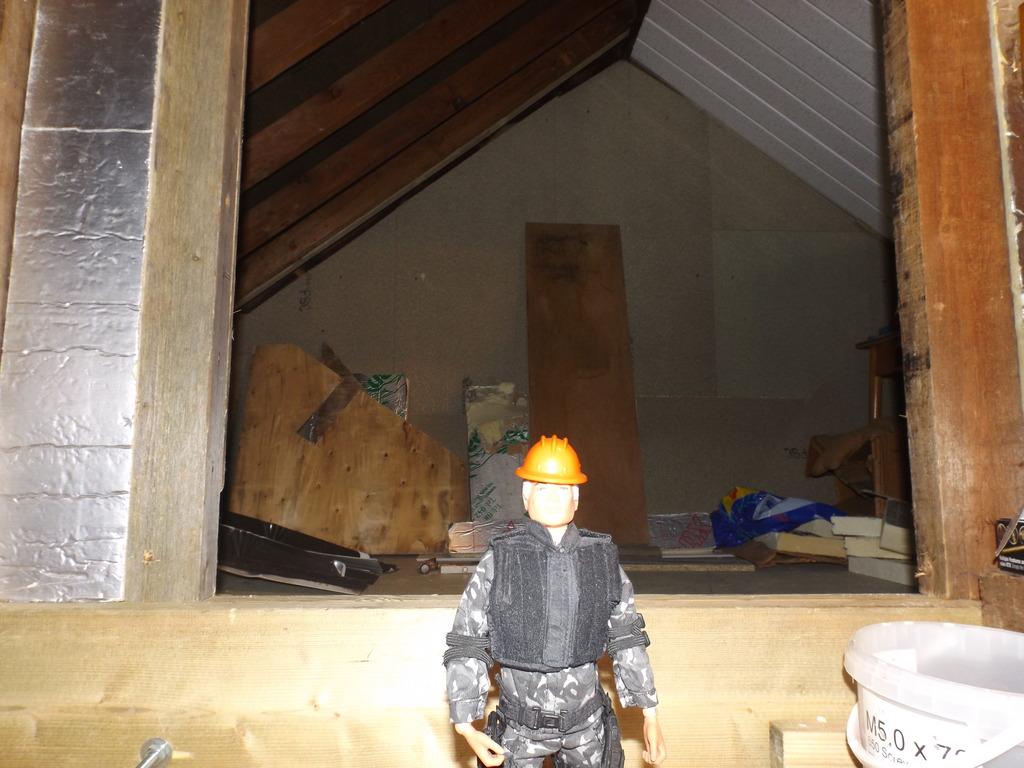 SKJ's Loft/Joe room. - Page 2 DSCF3298_zpsvnop0v0e