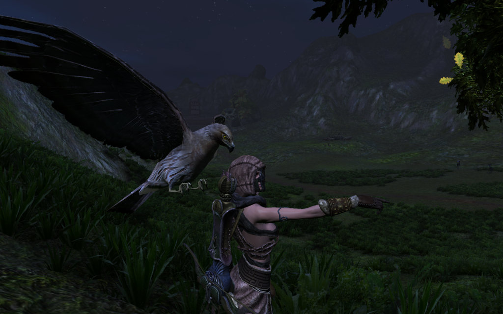 Some cool shots of AoC Andromada_picture000