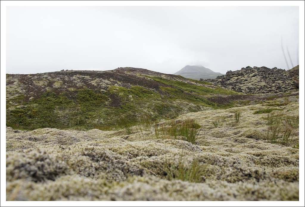 Un petit tour d'Islande... - Page 3 Isljour16_45p