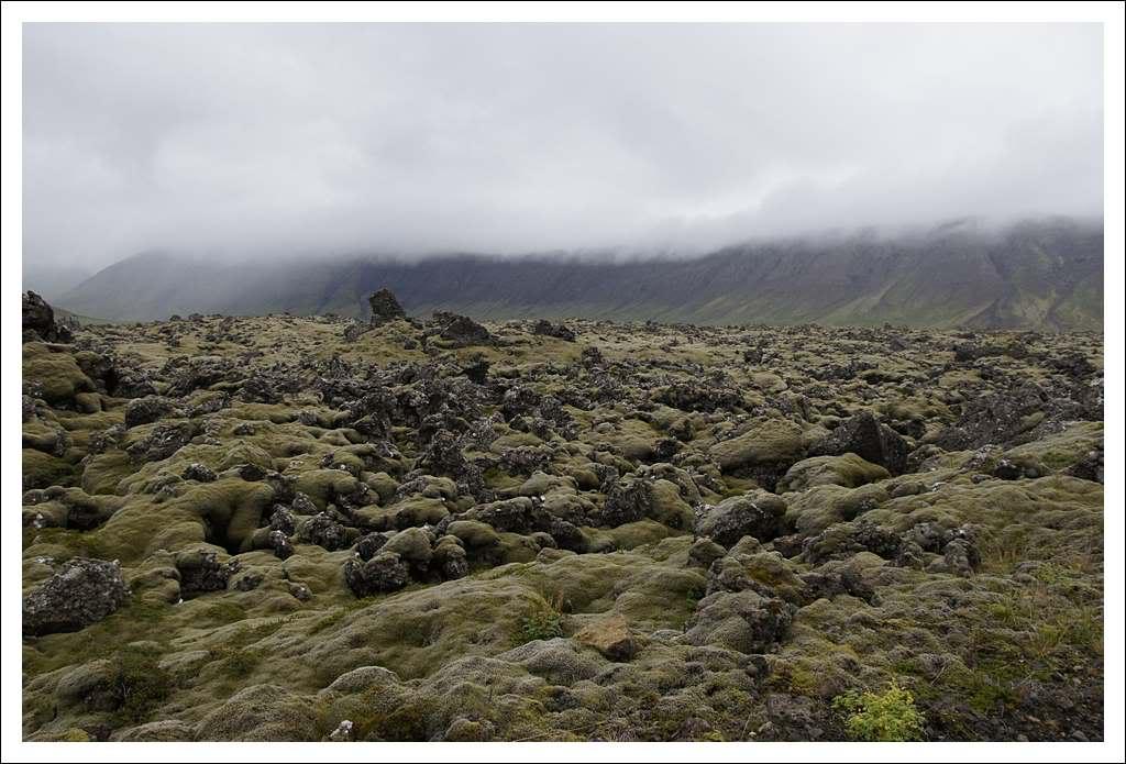 Un petit tour d'Islande... - Page 3 Isljour16_47p