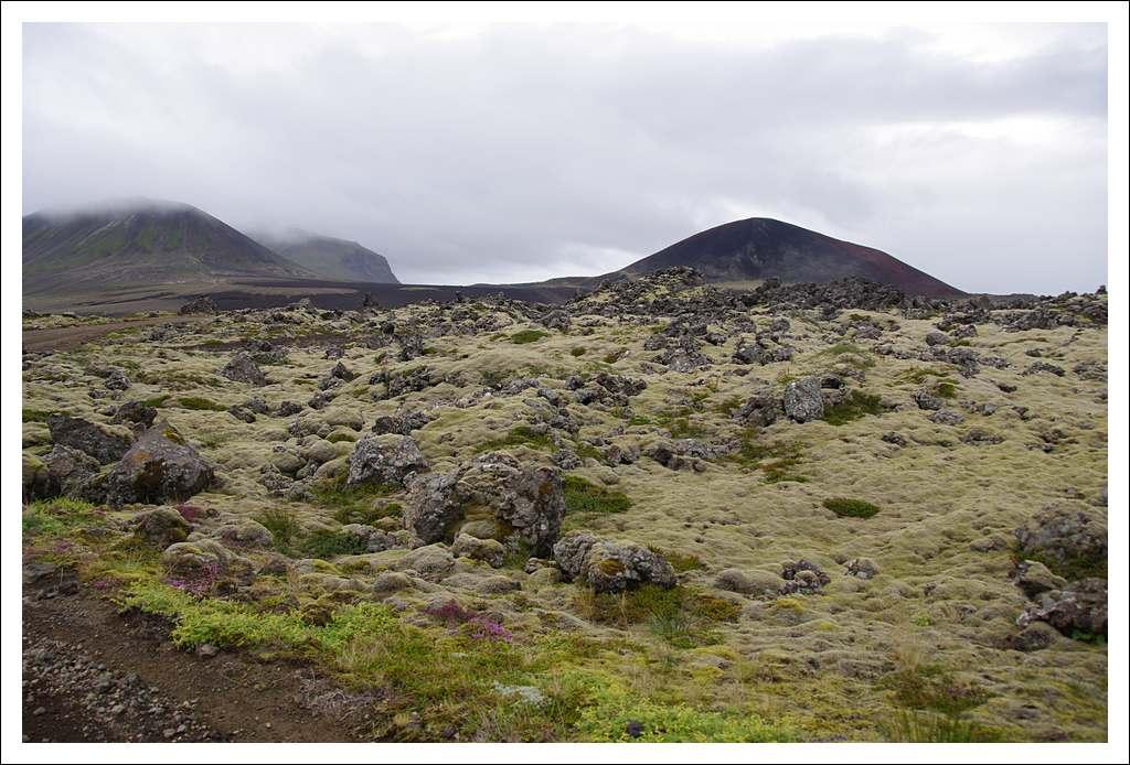 Un petit tour d'Islande... - Page 3 Isljour16_49p