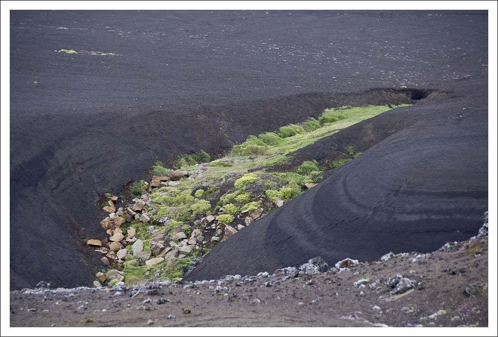 Un petit tour d'Islande... - Page 3 Isljour16_53p