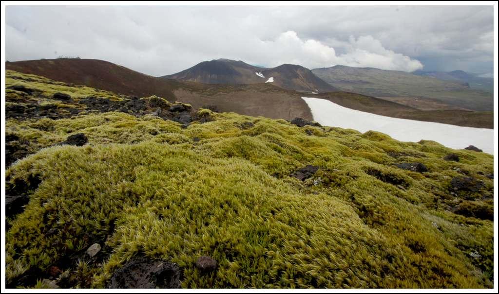 Un petit tour d'Islande... - Page 3 Isljour17_43p