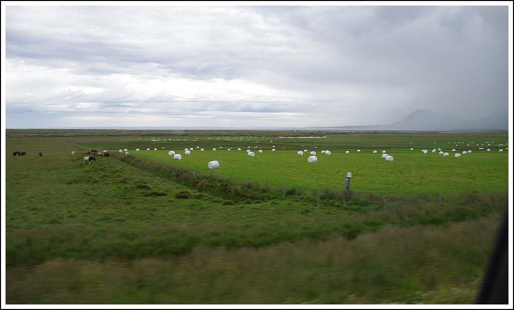 Un petit tour d'Islande... - Page 3 Isljour17_52p
