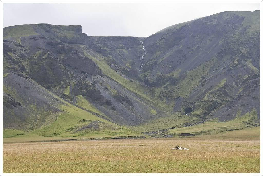 Un petit tour d'Islande... - Page 3 Isljour20_16p