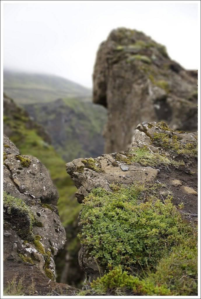 Un petit tour d'Islande... - Page 3 Isljour20_58p