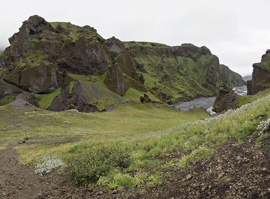 Un petit tour d'Islande... - Page 3 Isljour20_61Bp