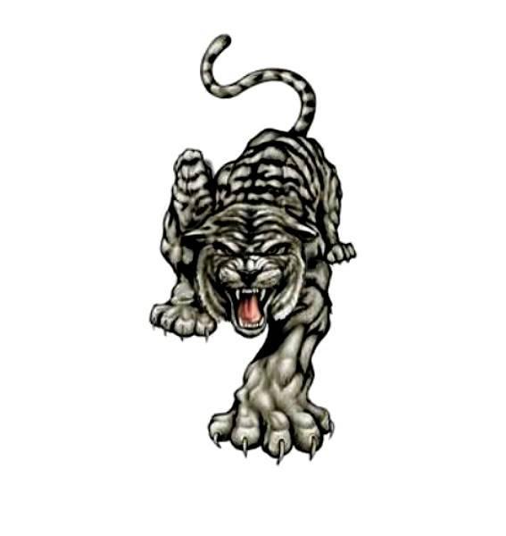 [FAIT] avatar et banniere  Tiger-1