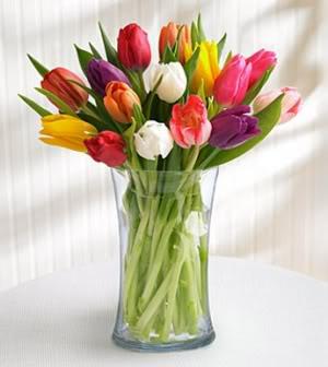 AWOKKKKKKKKKKKKKK ..errrrr - Page 3 Thumb_0_1218655568_15_tulips_lg