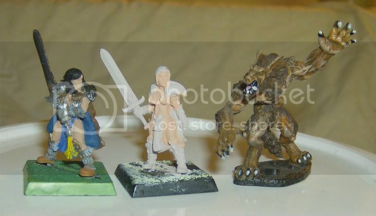 My various warbands Picture014-1