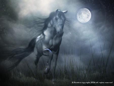 Một mình (thơ ĐL dp) Horse_zps84ced653