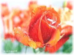 Xin vết thương lòng hãy nở hoa ( Thơ DL-Tina) Images-9