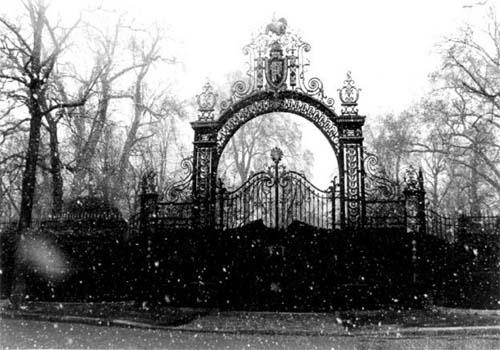 >:: Portão Entrada Principal da Academia Cross ::< Portao