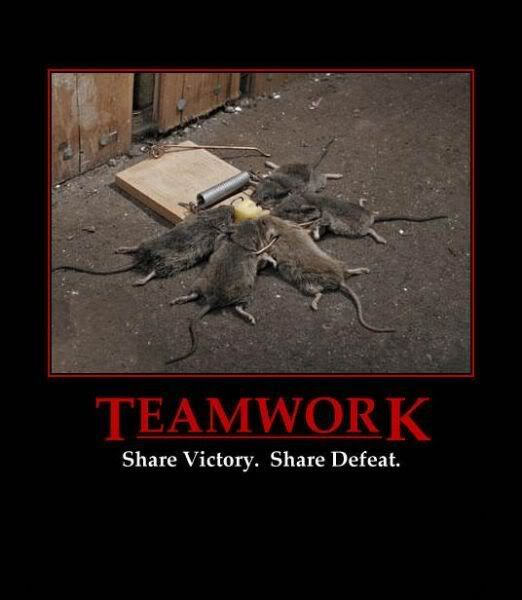 Why teamwork is important... TLUJZVRWPRRU4TQ3WZZEKXO7RI2I4HXN