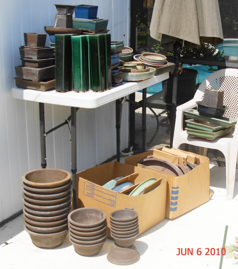 Mother lode of pots DSC02011