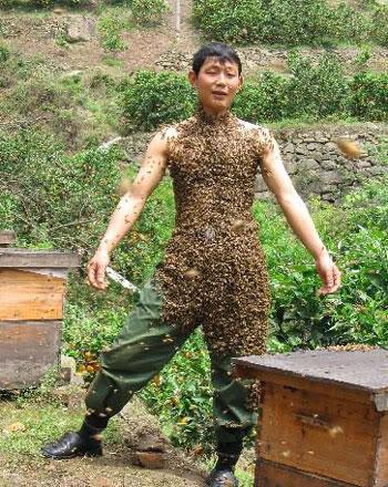 Okashi's Jutsu List of Candy!!!!!!!! Bee