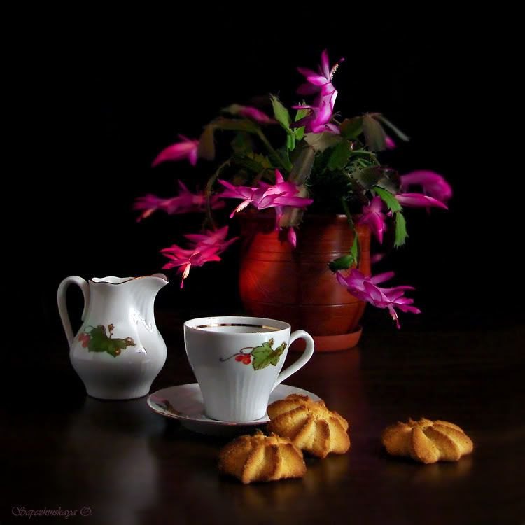 cafea Pictures, Images and Photos