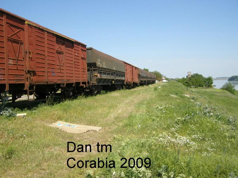 910 : Piatra Olt - Caracal - Corabia P5105412