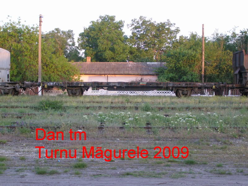 908 : Rosiori Nord - Turnu Magurele - Pagina 2 P5104852