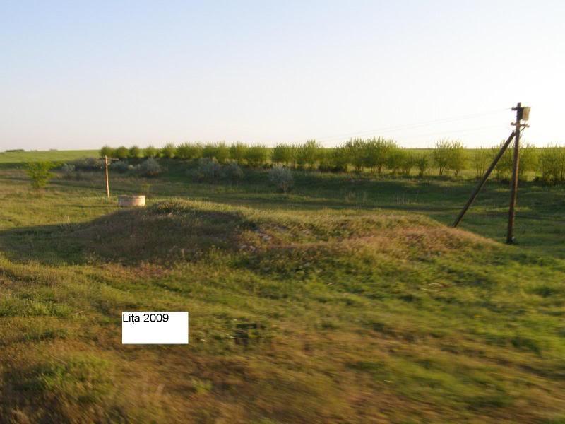 908 : Rosiori Nord - Turnu Magurele - Pagina 2 P5104912