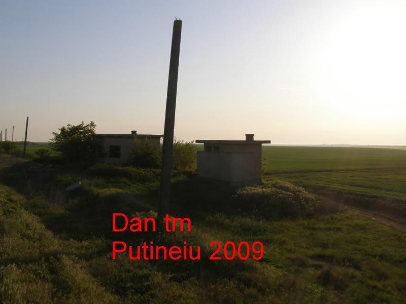 908 : Rosiori Nord - Turnu Magurele - Pagina 2 P5104914