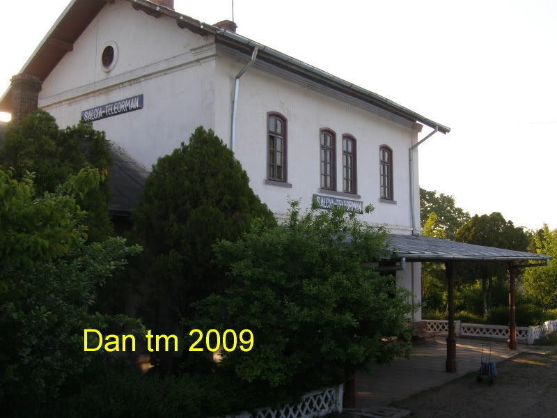 908 : Rosiori Nord - Turnu Magurele - Pagina 2 P5104924