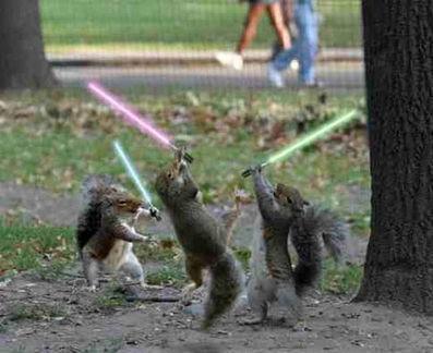 Neon -vs- The_Professor [TOO] (TD=806 Billion) 136-fighting-squirrels