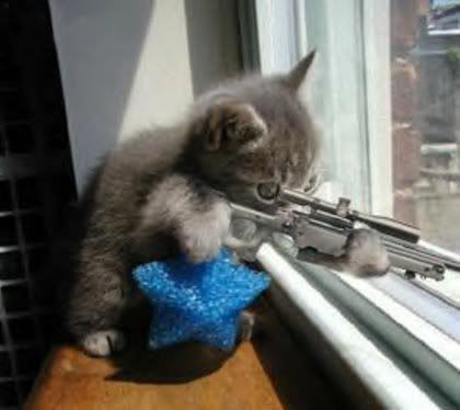 The_Professor [TOO] -vs- Tre_Beii   (TD: ~ 1.7 Trillion) Sniper-855