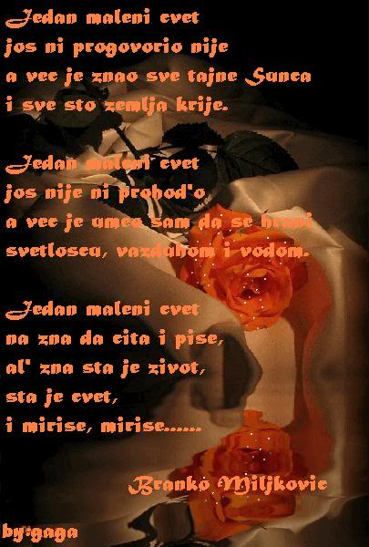 Poezija u slikama - Page 3 Jedanmalenicvet-bmiljkovic