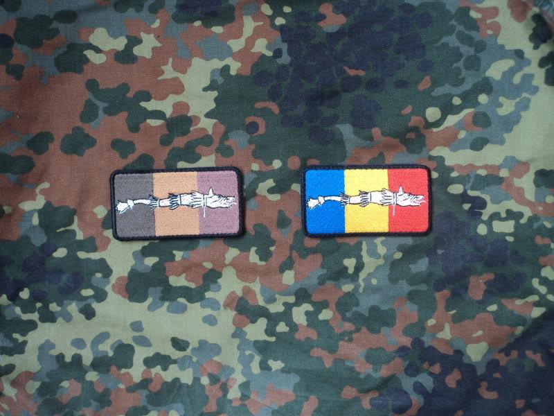 Embleme steag national cu lupul dacic DSC02996