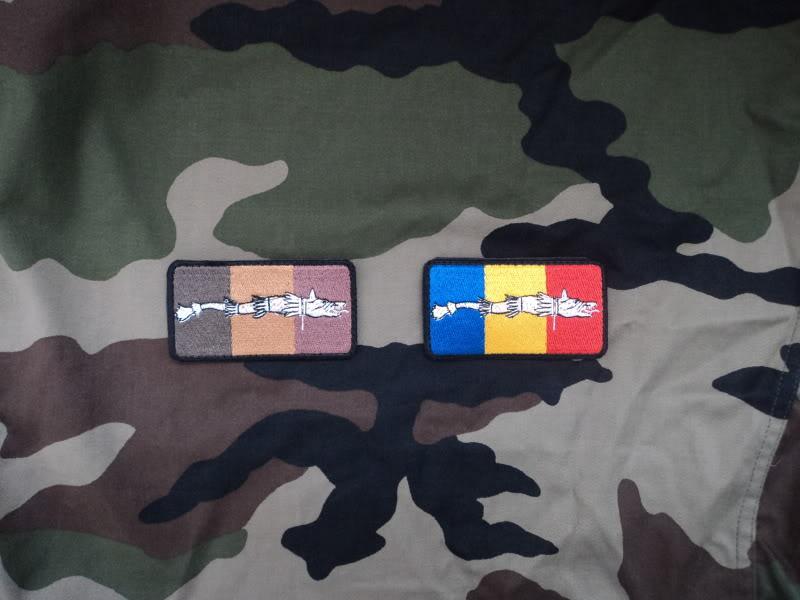 Embleme steag national cu lupul dacic DSC02999