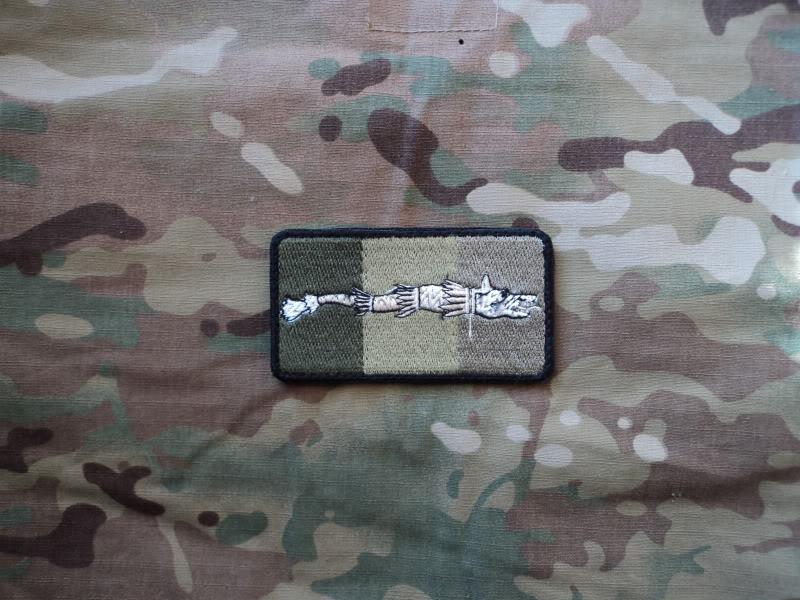 Embleme steag national cu lupul dacic DSC03008