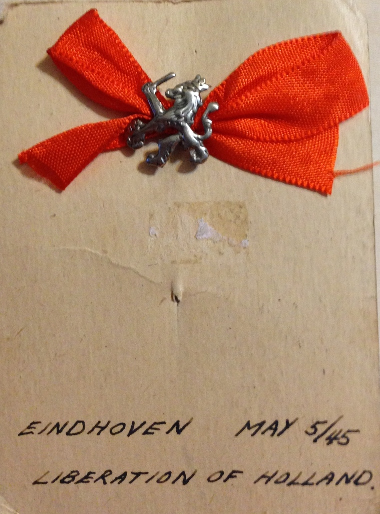 Eindhoven Lion Pin IMG_1959