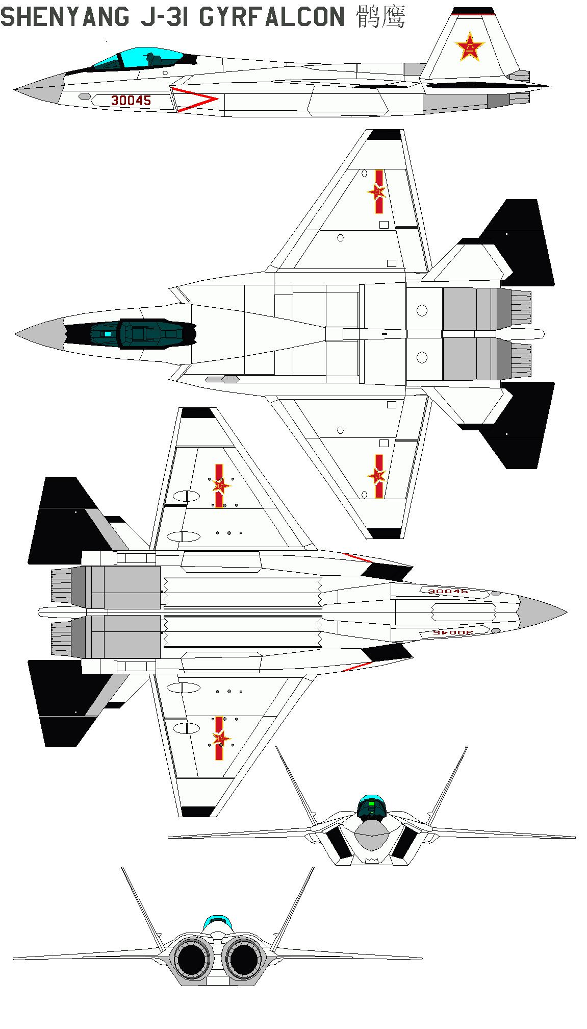 Chasseurs chinois - Page 3 ShenyangJ-31Gyrfalcon-1