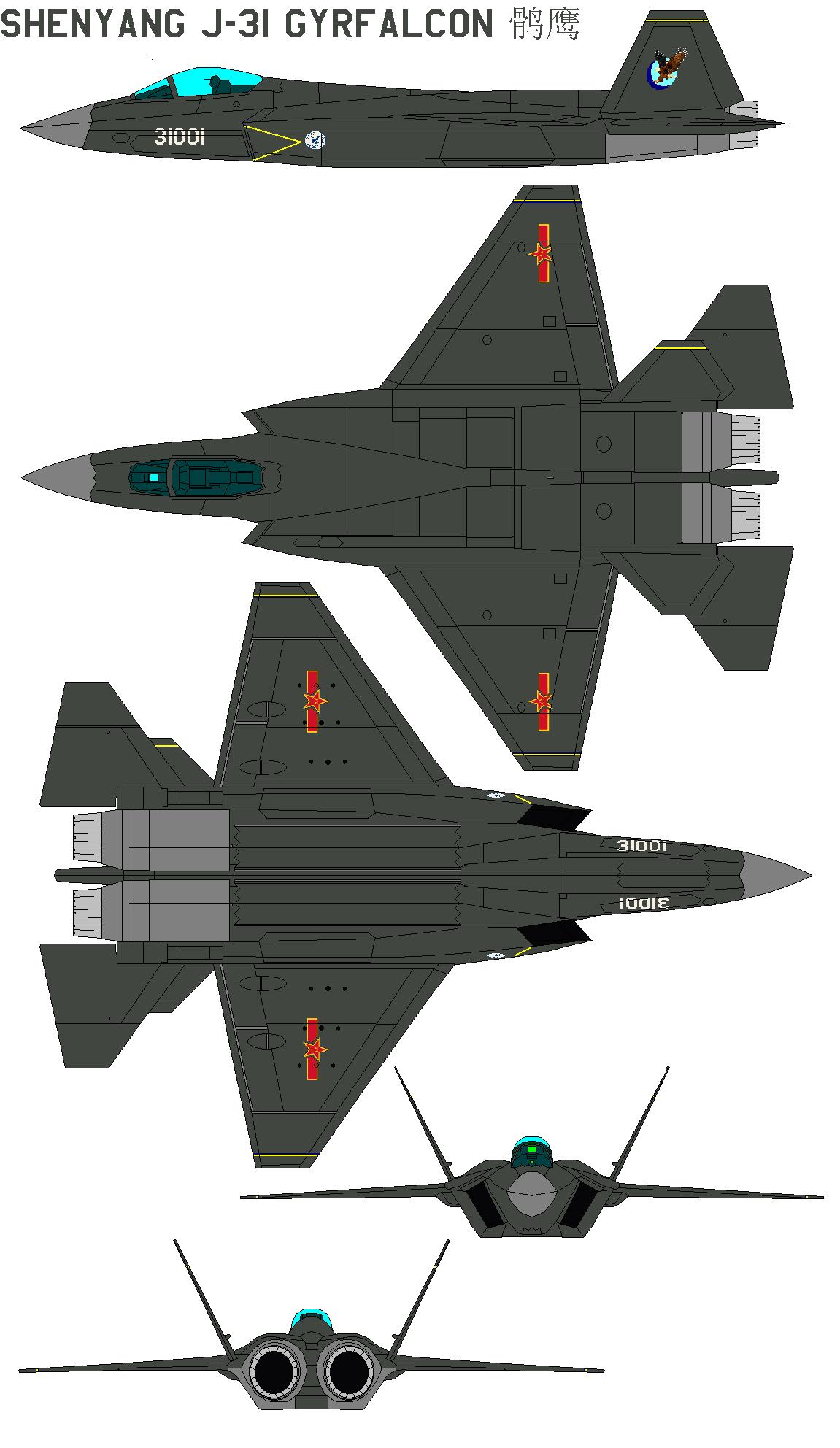 Chasseurs chinois - Page 3 ShenyangJ-31Gyrfalcon