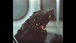 Fieras Radiactivas / Deadly Eyes / The Rats - Robert Clouse (1982) Mqdefault