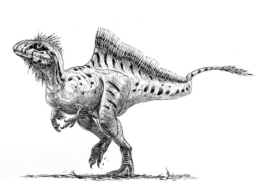 Concavenator Corcovatus [CP] Concavenator_corcovatus_2_by_dustdevil-d2ycvnn_zps1216bc9f