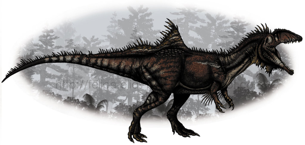 Concavenator Corcovatus [CP] Concavenator_corcovatus_by_felipe_elias-d36l9u7_zps1bca09df