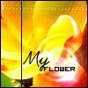 ::Gallery Avatars:: MyFlower
